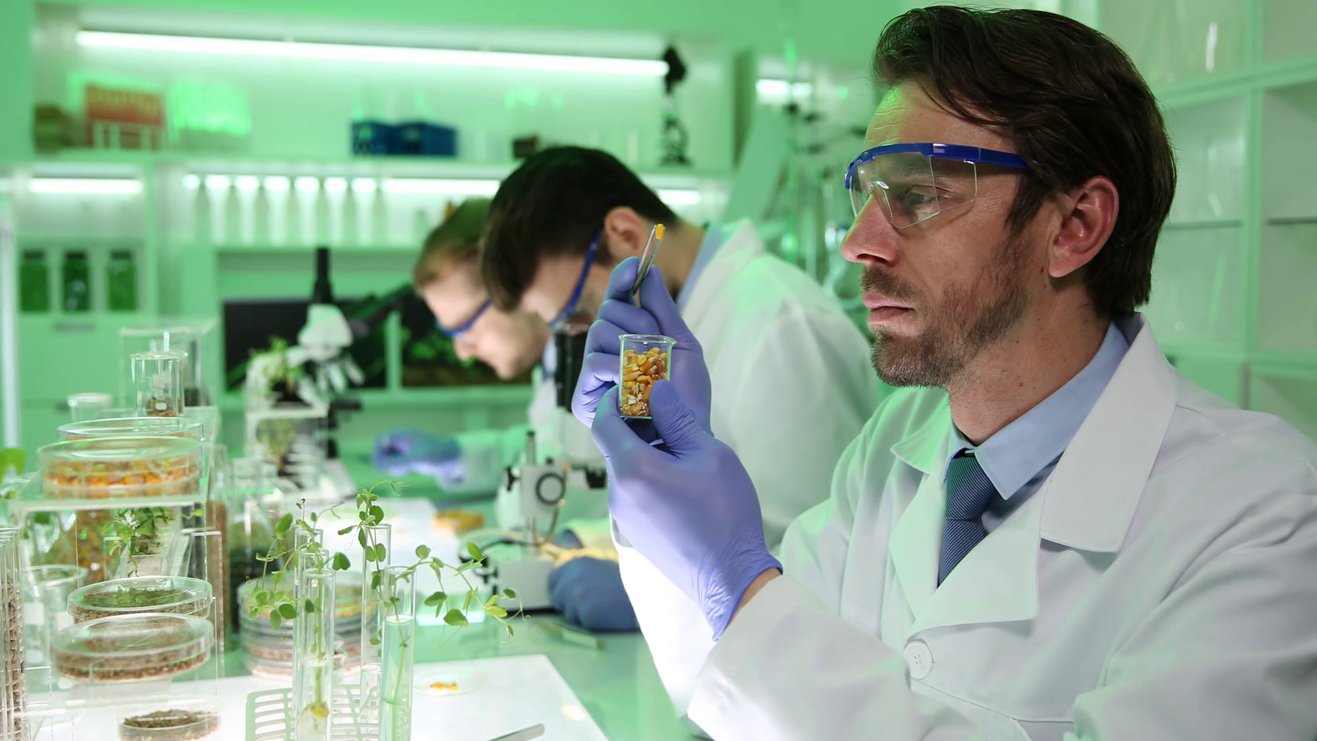 Системный биотехнолог