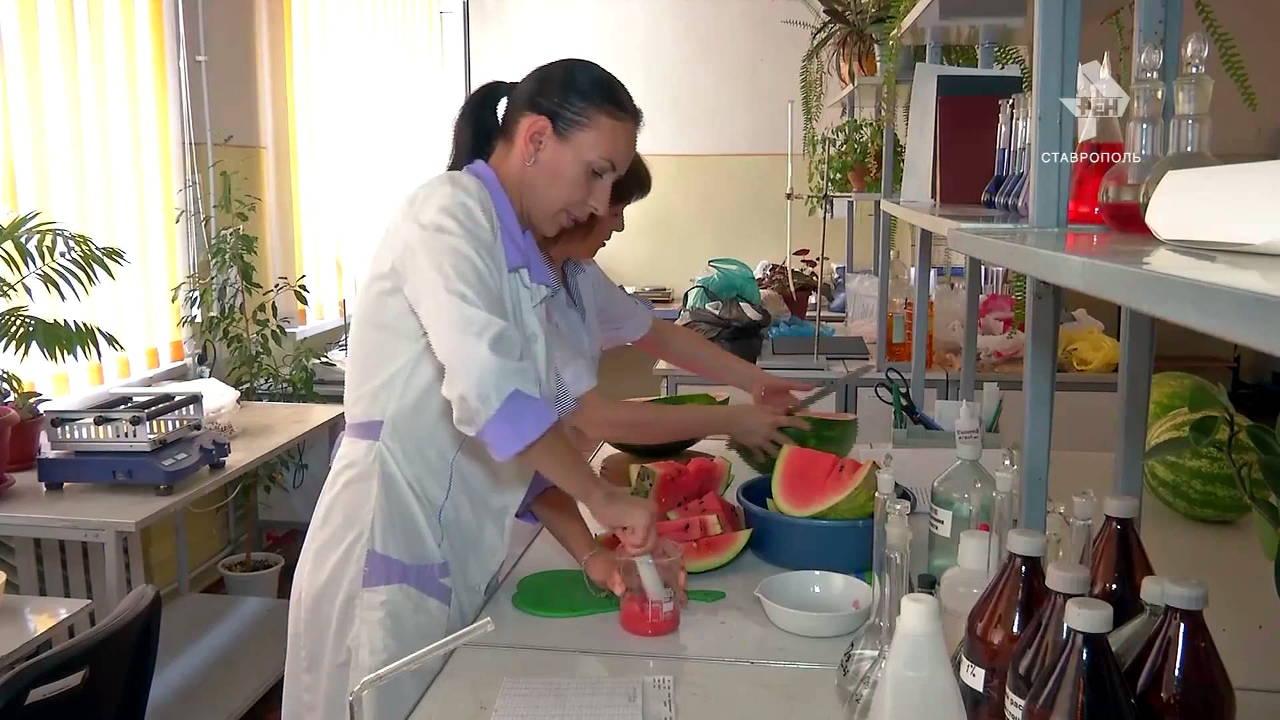 Агрохимики – это специалисты самого высокого уровня квалификации, ученые сельскохозяйственных наук