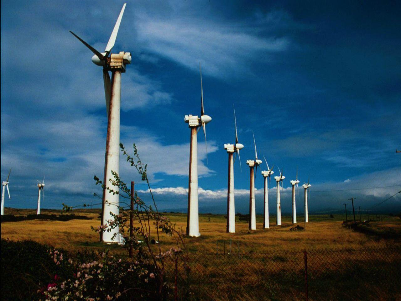 Альтернативный энергетик